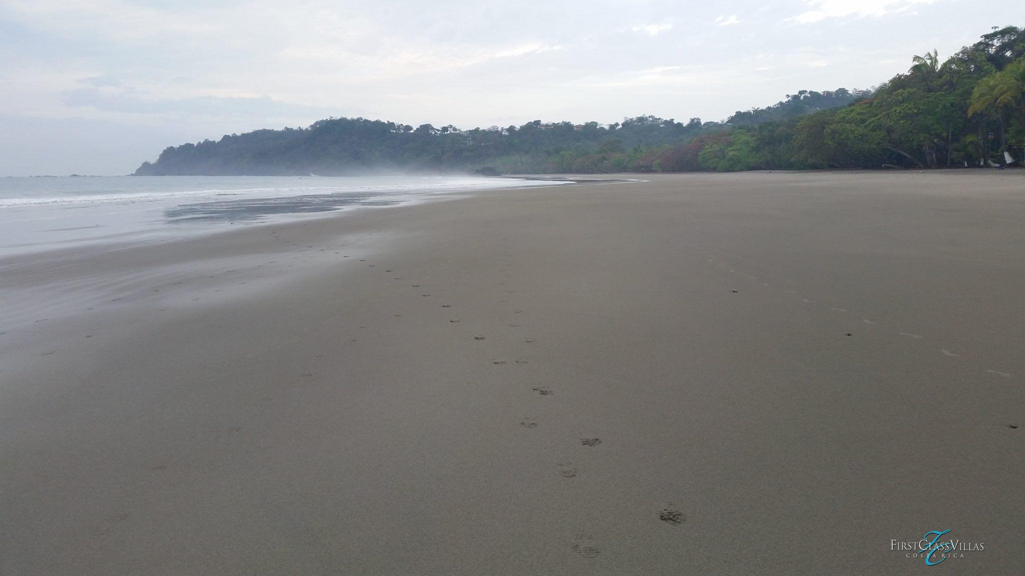 Deserted beach manuel Antonio